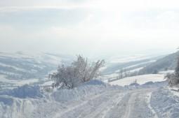 iarna pe ulitele Bacaului (35)