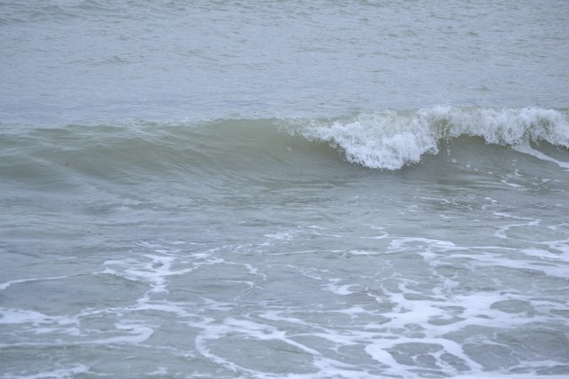 Marea Neagra, in luna februarie (94)