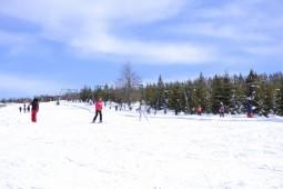 Partie de schi de la Bucsin (2)