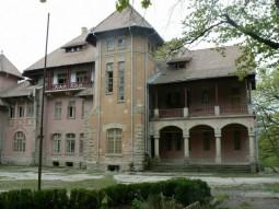 Palatul Stirbey (5)