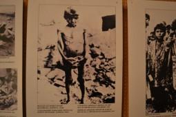 armeni genocid 1915 (2)