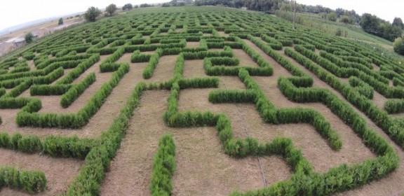 labirint filipesti