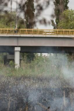 Incendiu, Insula  (2)