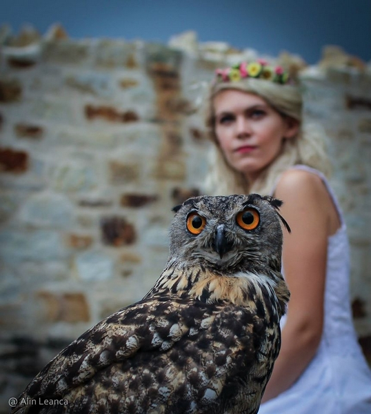 Festivalul Medieval Suceava 2015 7