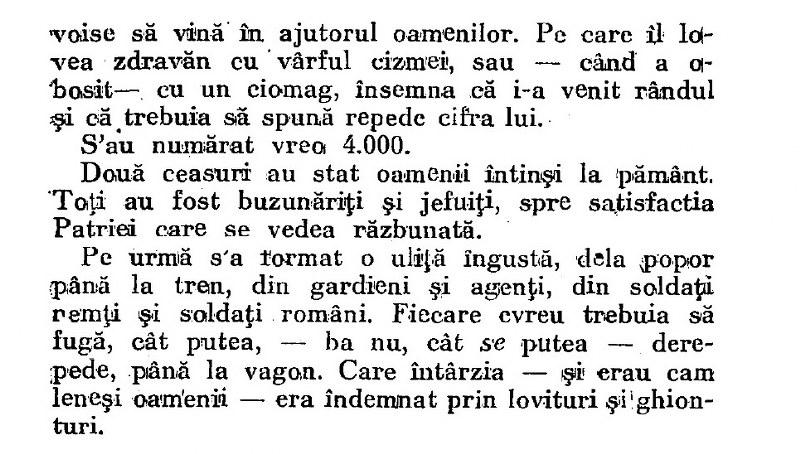 Pogromul de la Iasi, Mircu (1)